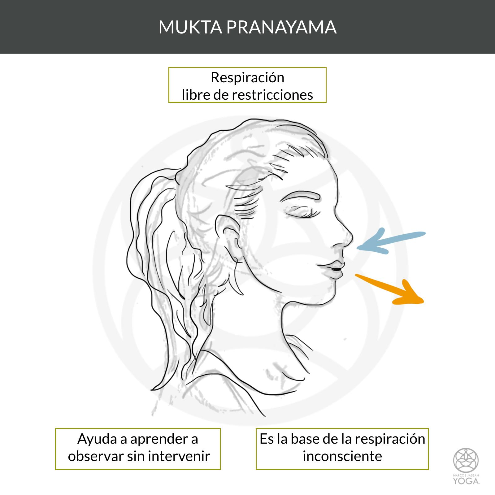 Curso Introducción a la respiración